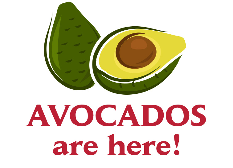 AVOCADOS are here!